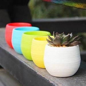 Baskets, Pots & Window Boxes