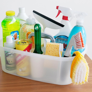 Cleaning Products & Supplies