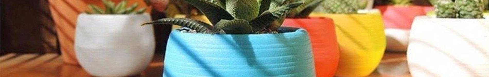Plant Care, Soil & Accessories