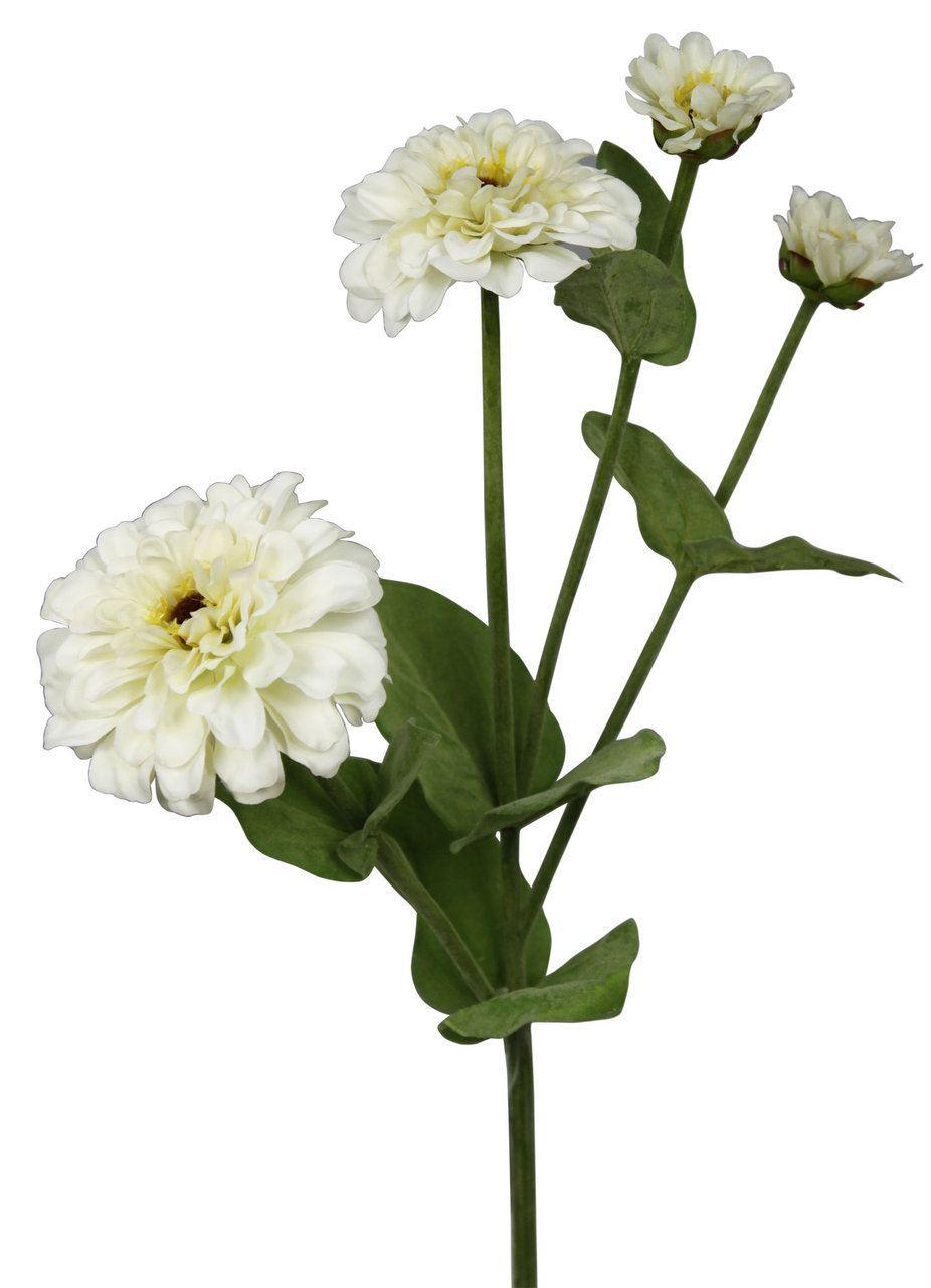 White Single Stem Zinnia Flower Real Feel Silk Effect