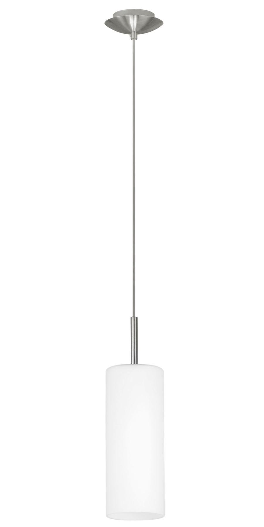 Troy Steel Hanging 1 Light Nickel-Matt White Coated Glass Shade